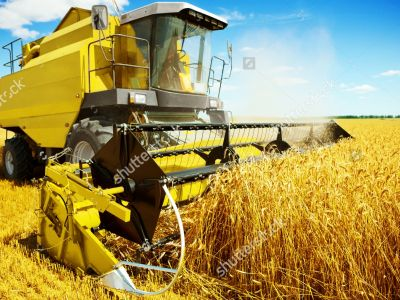 Stock Photo An Yellow Harvester In Work 140484307